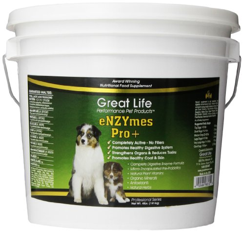 Great Life Enzymes Pro Pet Digestive Remedy, 4-Pound
