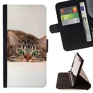 Momo Phone Case / Flip Funda de Cuero Case Cover - Gato British American Shorthair Wirehair; - LG Nexus 5 D820 D821
