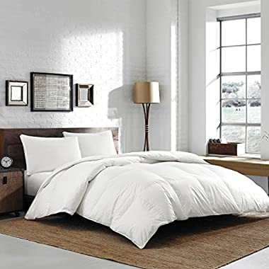 Eddie Bauer Luxury 370 TC Batiste Cotton 700 Fill Power Hypoallergenic White Goose Down Comforter - Lofty Baffle Box Construction (Oversized King 112  x 100 )