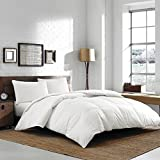 Eddie Bauer Luxury 370 TC Batiste Cotton 700 Fill Power Hypoallergenic White Goose Down Comforter - Lofty Baffle Box Construction (Oversized King 112'' x 100'')
