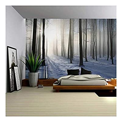 A Blanket of Snow in The Forest at Winter Time - Wall Mural, Removable Sticker, Home Decor - 100x144 inches