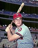 Signed Rader Photograph - 8x10 W COA AT BAT - Autographed MLB Photos