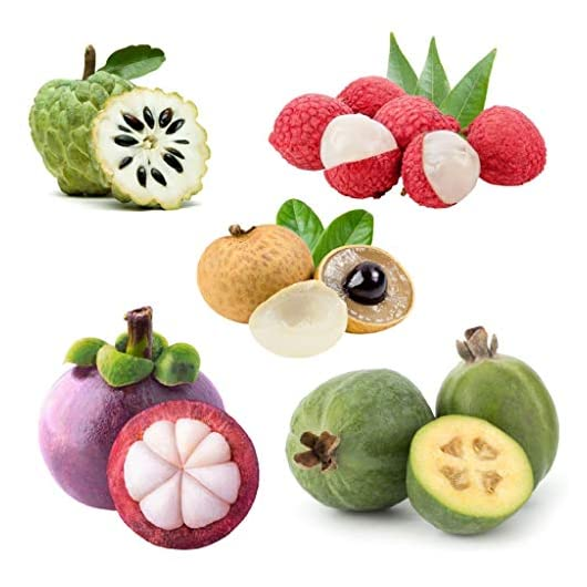 Mini Tropical Fruits Box