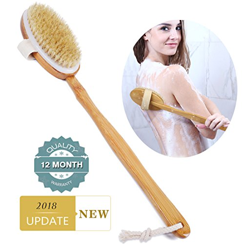 Shower Brush Bath & Dry Skin Body Brushing with Long Bamboo Detachable Hand & Soft Boar Bristle for Back Scrubber-by Ecobambu