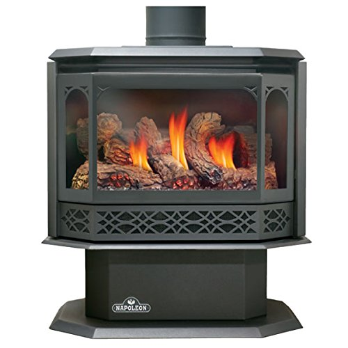 WOLF STEEL LTD - CORE 16882 GDS50-1N Napoleon Direct Vent Natural Gas Stove by WOLF STEEL