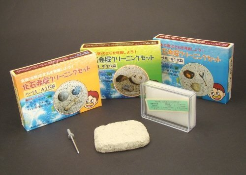 1 hen Paleozoic fossil excavation cleaning set part (japan import) Tokyo Science
