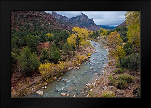 Utah, Zion NP Virgin River and Cottonwood Trees Framed Art Print by Rotenberg, ()