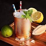 Tin Can-Tazza in rame per Cocktail, 280 ml, confezione da 4, a forma di tazza per Cocktail a forma di poltrona può
