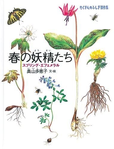 春の妖精たち (たくさんのふしぎ傑作集)