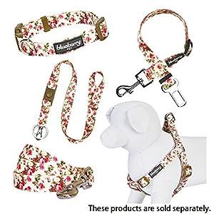 "Blueberry Pet 8 Patterns Spring Scent Inspired Pink Rose Print Ivory Dog Collar, Large, Neck 18""-26"", Adjustable Collars for Dogs"