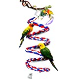 CocoGo1/2-Inch by 45.5-Inch Cotton Rope Bungee Bird Chewing Toy Suitable for SmallorMedium Parrots and Birds