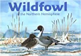 Wildfowl of the Northern Hemisphere