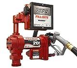Fill-Rite FR4211GL 12V DC Hi-Flow Pump with 901L Meter Liter