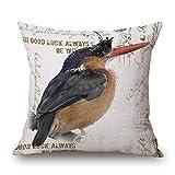 "European American Retro Cotton Linen Square Vintage Birds Pattern Design Throw Pillow Case Decorative Cushion Cover Pillowcase 18 ""X18 "" Color 7"