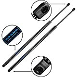 6117 Struts Compatible with Honda Odyssey 05-10 Liftgate Gas Charged Lift Supports Struts Arms with Out Powered Liftgate 2 pcs