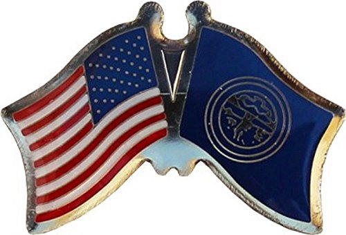 ALBATROS Pack of 50 USA American Nebraska State Flag Lapel Pin for Bike Hat and Cap for Home and Parades, Official Party, All Weather Indoors Outdoors