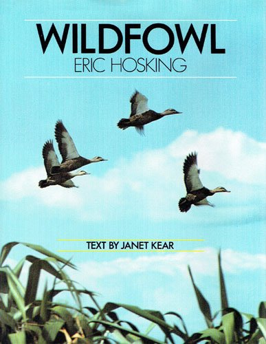 Wildfowl (Animals Wildfowl)
