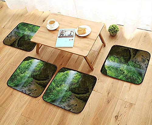 Leighhome Home Chair Set Michigan Caves Memorial Falls in The Forest Eco Foliage Picture Army and Fern Machine-Washable W21.5 x L21.5/4PCS Set