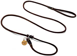 Wellbro Luxury Genuine Leather Slip Dog Leash Deluxe Slip Lead with Adjustable Collar Soft Touch and Exquisite Suit for Small Medium Puppies 160cm Length by 0.6cm Wide Brown
