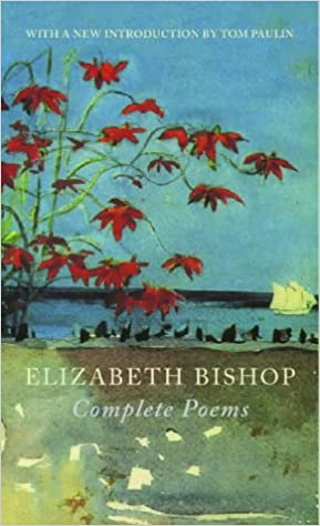what is the theme of the fish by elizabeth bishop