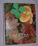 Plants : An Evolutionary Survey, Scagel, R. F., 0534028020