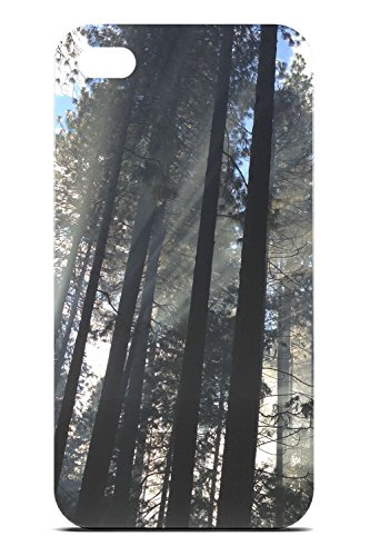 Yosemite Valley Trees - Photo by Mike Petrucci - Tough Phone Case - Apple iPhone 4 / - Valley Tmobile Fashion