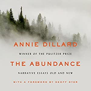 The Abundance Audiobook