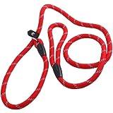 TOPWEL Pet Dog Nylon Adjustable Loop Slip Leash Rope Lead 1.2m