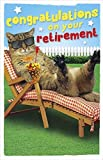 UK Greetings Retirement Greetings Card - Cat In Sun 8.25' x 5.25' Code 407780--1