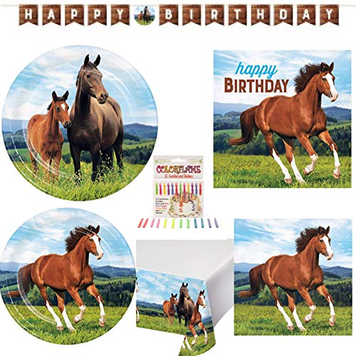 Olive Occasions Horse Equine Happy Birthday Disposable Paper Party Supplies Serves 16 Dinner Plates, Cake Plates, Lunch Napkin, Beverage, Table Cover, Happy Birthday Banner, Candles and Recipe