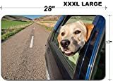 Liili Large Table Mat Non-Slip Natural Rubber Desk Pads dog poking his head out the window of a car in a long road IMAGE ID 14309069