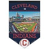 Cleveland Indians MLB Banner