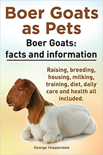 Boer Goats as Pets  Boer Goats: Facts and Information