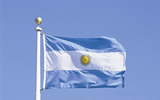 Argentina Bandera 5 * 3 pies / 150 * 90 cm Bandera de poliéster perfecta para Partidos y Actividades Gran Bandera de AR: Amazon.es: Deportes y aire libre