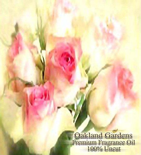 BULK x Victorian Roses Fragrance Oil - Classic aroma of freshly cut roses with base notes of amber musk - By Oakland Gardens (030 mL - 1.0 fl oz Bottle)