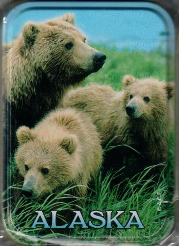 (Alaska Grizzly Bear Standard Playing Cards (In Tin Case))