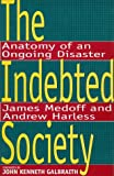 img - for The Indebted Society: Anatomy of an Ongoing Disaster book / textbook / text book