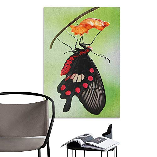 Jaydevn Wall Art Canvas Prints Swallowtail Butterfly Amazing Moment Coming Out of Cocoon Chrysalis Transformation Red Black Green Hall Fashion W24 x H36