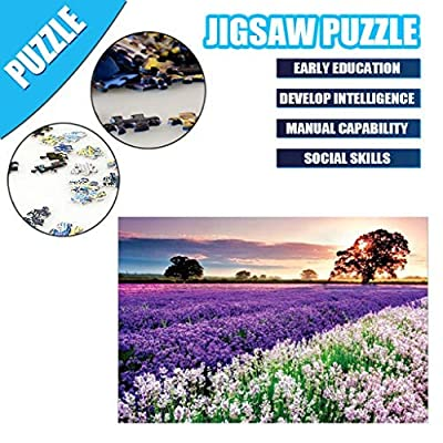 JORGELL 1000 Piece Puzzles for Adults Summer in Provence Lavender Sea Paper Jigsaw Puzzles Landscape 1000pcs Puzzle Toy Game for Kids: Toys & Games