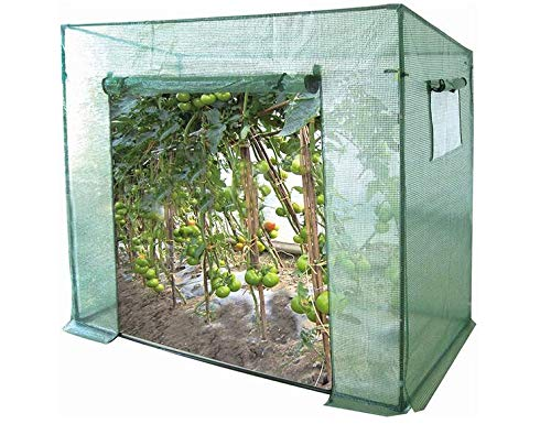 GOJOOASIS Tomato Greenhouses Hot House Upright Plants Shed Growing Cultivation Tent
