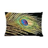 Artsbaba Pillowcases Peacock Feather Zipped Pillowcase Decorative Throw Pillow Cover 20''x30''