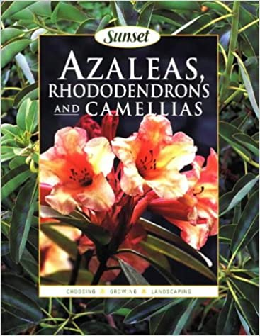 Azaleas, Rhododendrons and Camelias