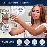 Pureline DA29-00020B Water Filter