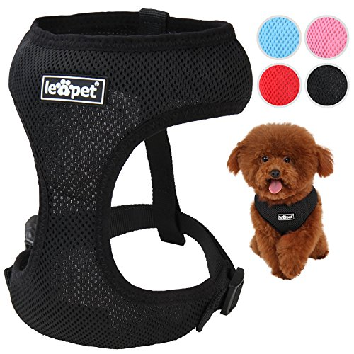 Hundegeschirr Hundehalsband Hundezubehör in vier verschiedenen Farben und 5 verschiedenen Größen (XS, S, M, L, XL) größenverstellbar