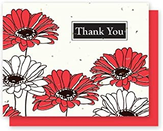 product image for Grow A Note® Thank You Gerber Daisy 5-Pack