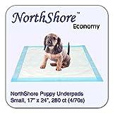 NorthShore Economy, 17 x 24, 6 oz, Puppy Pads, Small, Case/280 (4/70s)