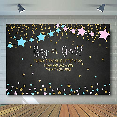 COMOPHOTO Twinke Twinkle Little Star Gender Reveal Backdrop for Photography Pink and Blue Baby Shower Party Banner Background for Photo Booth 7x5ft Cake Table Decorations