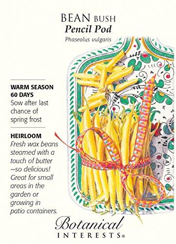 Pencil Pod Bush Bean Seeds - 25 grams