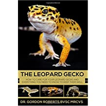 The Leopard Gecko: How to care for your Leopard Gecko and everything you need to know to keep them well.