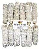 Govinda - 12 Pack - Premium California White Sage Smudge Sticks, Each Stick Approximately 4 Inches Long